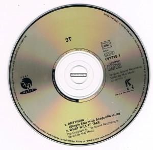 anythingcdsfr3-300x294 dans CD